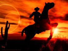 cowboy common sense-featured image